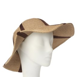 Шляпа CELINE ROBERT ASIENE бежевый